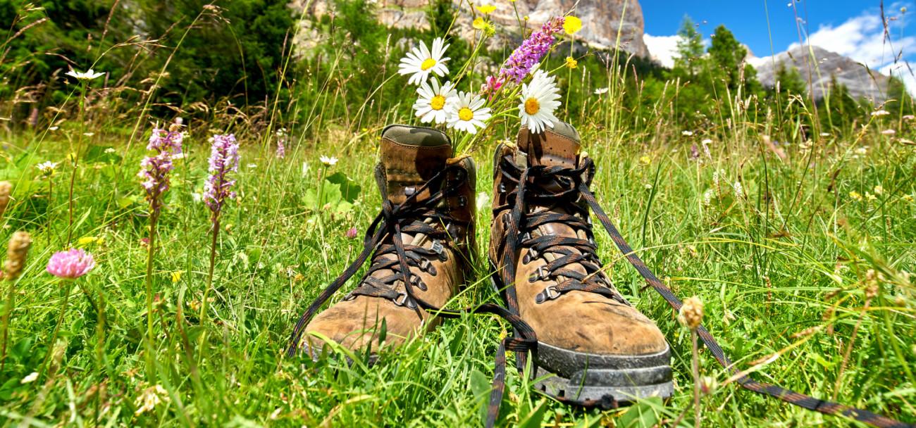 Acquista scarpe da trekking da Meindl in Alto Adige